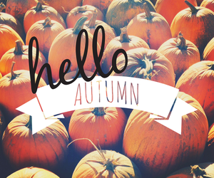 autumn, hello, and orange image
