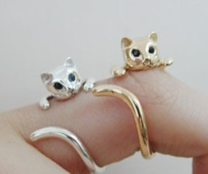cute, cat, and rings image