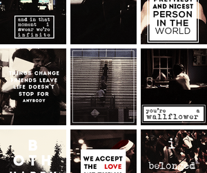 perks of being, being a wallflower, and movie image