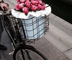 basket, bike, and flowers image