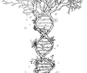 tree, DNA, and drawing image