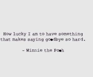 love, goodbye, and life image
