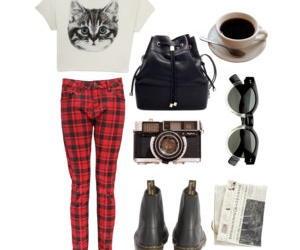 cat, clothes, and plaid image