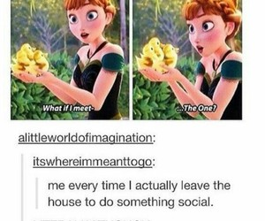 funny, tumblr, and frozen image