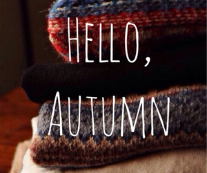 autumn, jumpers, and sweater weather image