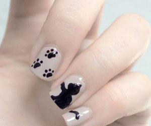 nails, cat, and nail art image