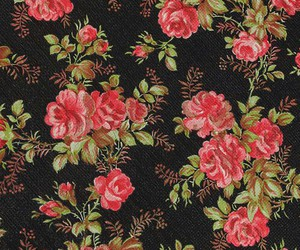 roses and wallpaper image