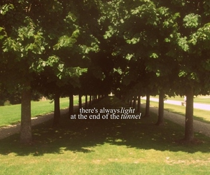 light, quote, and tree image