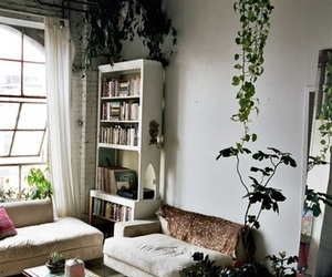 plants, home, and room image
