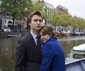 the fault in our stars, tfios, and Shailene Woodley image