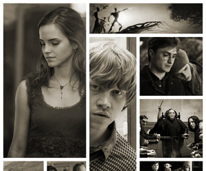 harry potter, harmione, and hermione image