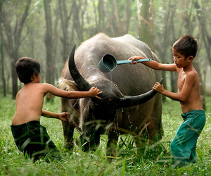 animal, kids, and friendship image