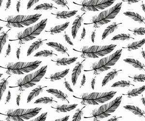 wallpaper, feather, and background image