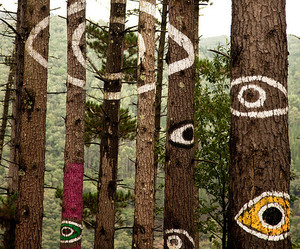 tree, eyes, and forest image
