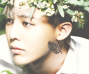 g-dragon image