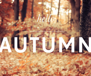 autumn, beautiful, and quotes image