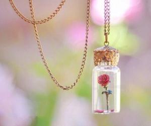 rose, disney, and princess image