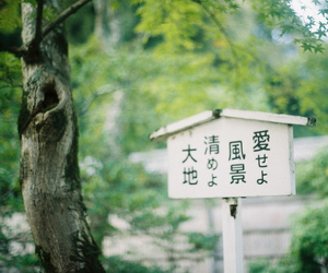green, japan, and japanese image