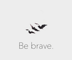 be, birds, and brave image