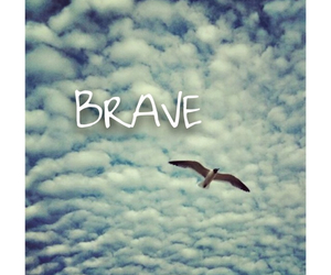 background, bird, and brave image