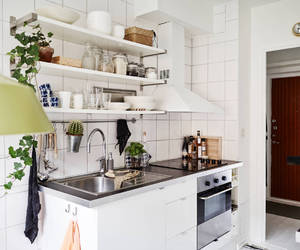 apartment, cooking, and kitchen image