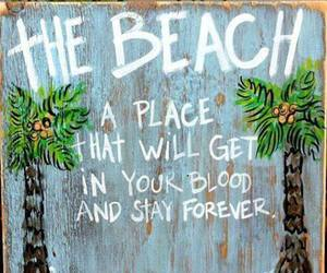 beach, forever, and quotes image