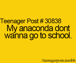 school, anaconda, and funny image