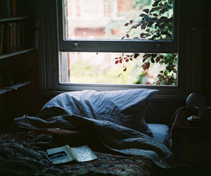bed, leaves, and window image