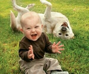 dog, baby, and happy image