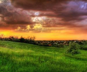 green, nature, and Serbia image