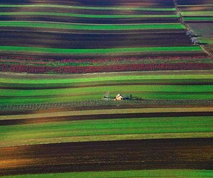 colours, Serbia, and backa image