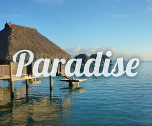 paradise and beach image