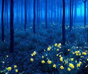 dark, flowers, and forrest image