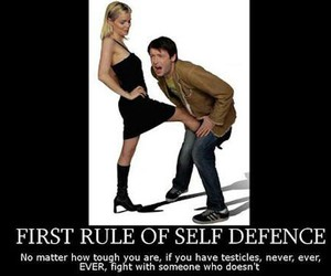 fight, rules, and true image
