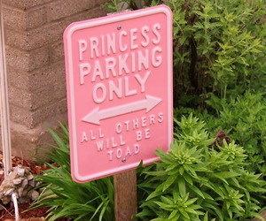 princess, pink, and parking image
