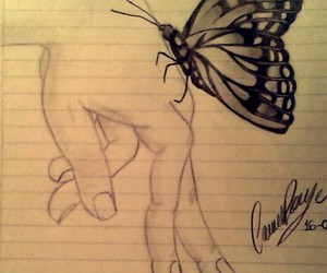 black and white, butterfly, and draw image