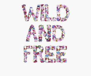 wild, free, and flowers image