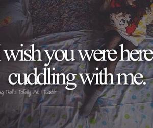 love, cuddling, and cuddle image