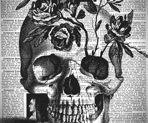 skull, flowers, and rose image