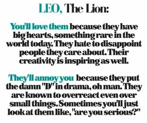 Leo, lion, and zodiac signs image