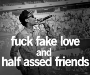 fake, love, and fuck you image