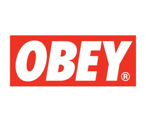 obey, overlay, and hipster image
