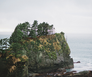 hipster, indie, and nature image