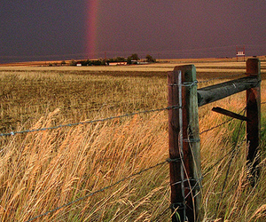 country, rainbow, and fence image