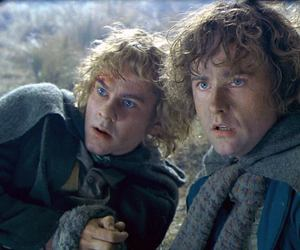 merry, the lord of the rings, and pippin image