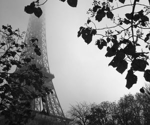 beauty, black and white, and eiffel tower image
