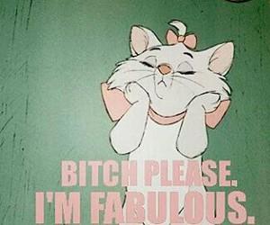 fabulous, cat, and bitch image