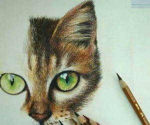 drawing, beautiful, and cats image