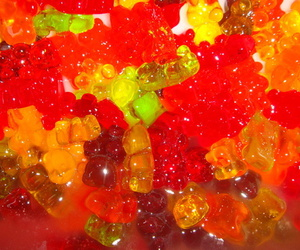 bears and gummy image