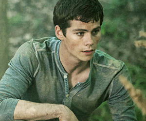 dylan, o'brien, and the maze runner image